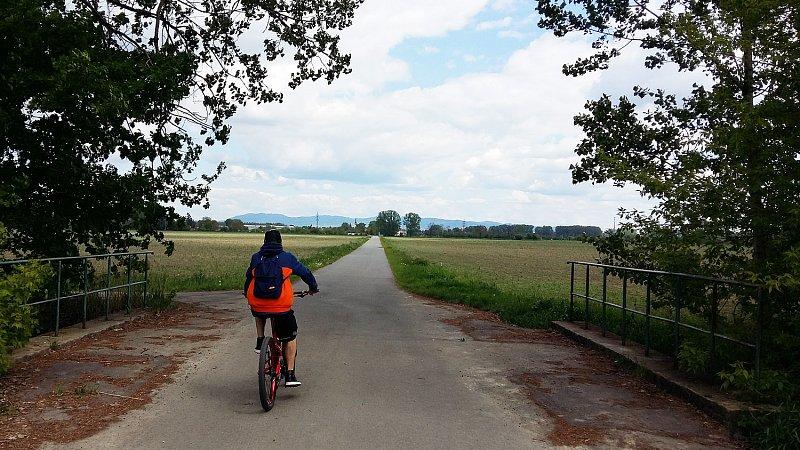 Pohodový úsek cyklostezky z Bílan do Hulína